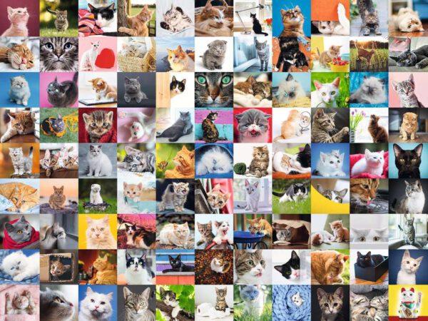 99 katten, puzzel 1500 stukjes 2